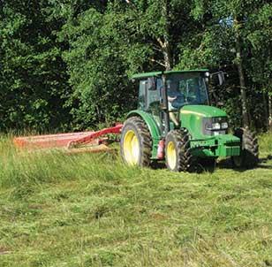 cutting long grass