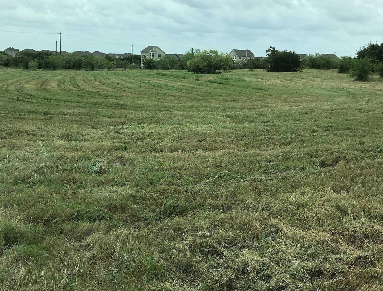Pasture mowing service bids