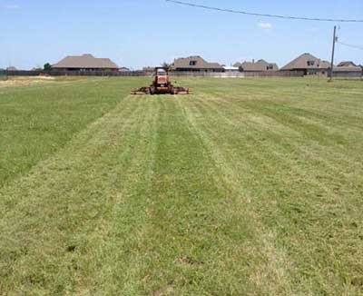 mowing large lawns with professional grass cutters